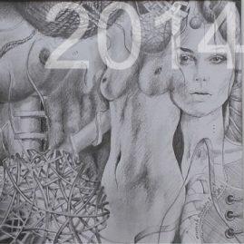 Kunst Bilder 2014